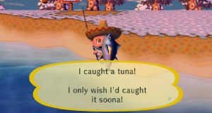 Animal Crossing - fishing